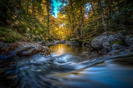 Ruisseau, parc du Mont-Tremblant, Québec