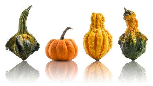 Montage de quatre courges comme support visuel pour la période de l'halloween