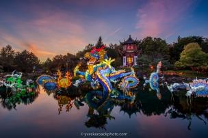 Le dragon chinois est la vedette de la 25e édition des Jardins de lumière au Jardin Botanique de Montréal