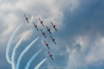 Les Snowbirds en action