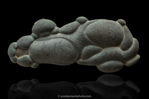 Baptisées ainsi par les amérindiens qui les portaient comme porte-bonheur, ces pierres sont des concrétions constituées de sable fin et de limon, consolidées par un ciment calcaire, formées lors du recul du front glaciaire. Spécimen de 11,5 cm de largeur. Empilement de 6 images pour une netteté uniforme. ----- Fairy Stones Worn as lucky charms by first nations people who gave them this name, these stones are concretions found in Quebec, formed over thousands of years by deposition of calcium carbonate over small pebbles and fossils. 11,5 cm wide specimen. 6 images focus stacking.