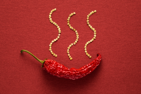 Single red dried banana pepper on a red paper background with pepper seeds