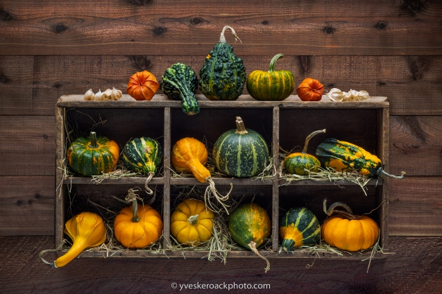 Colorful decorative gourds in a wood storage box mounted on dark
